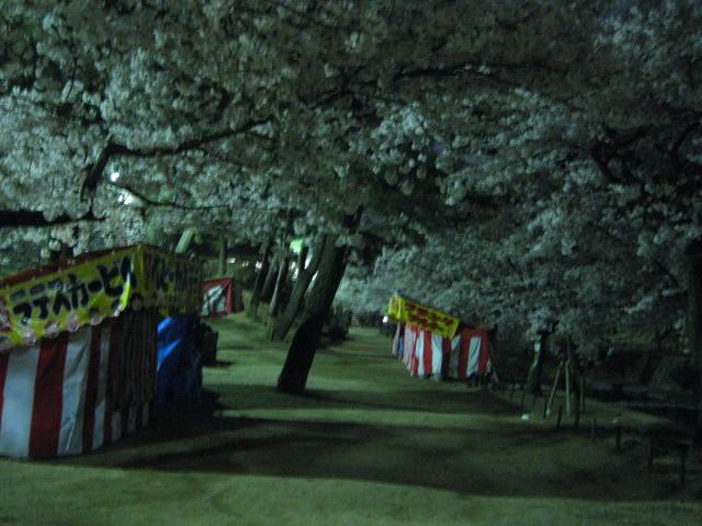 09-nig-syukugawa22.JPG
