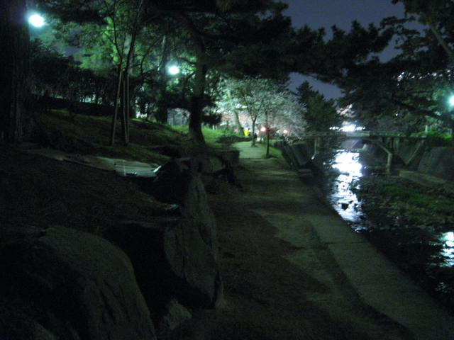 09-nig-syukugawa34.JPG
