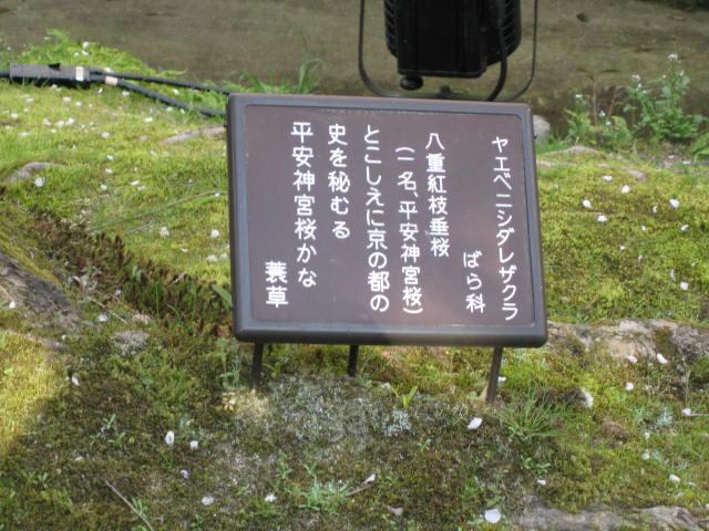 09-sp-kyoto186.JPG
