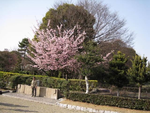 09-sp-nagoya34.JPG