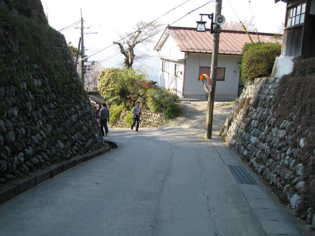 09-yoshino-sakura202.JPG