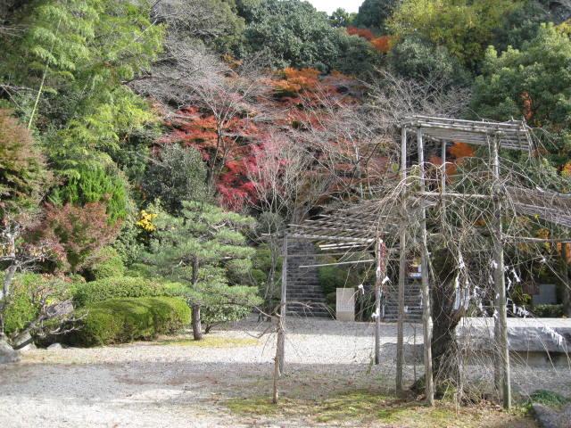 10-koyo-kyoto581.JPG