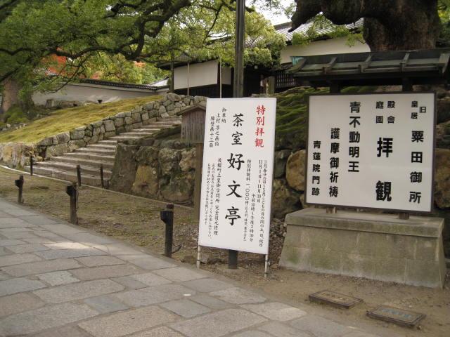 10-koyo-kyoto609.JPG