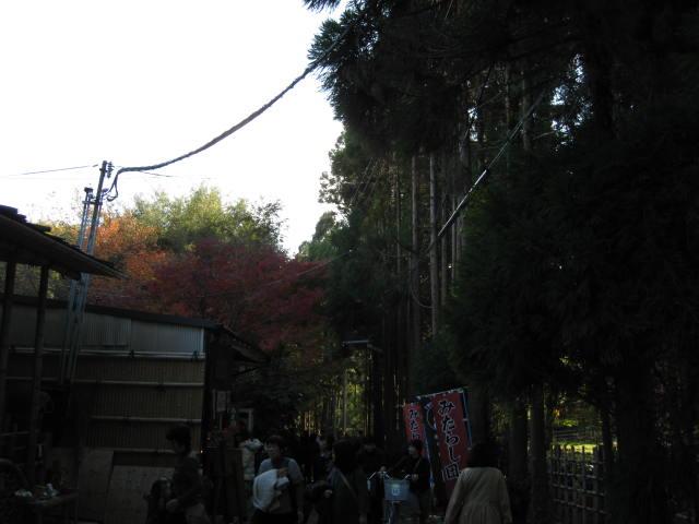 10-koyo-kyoto99.JPG