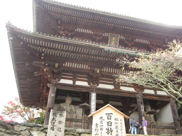 10-koyo-yoshino24.JPG