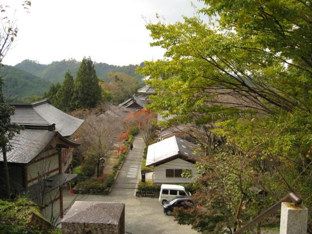 10-koyo-yoshino28.JPG