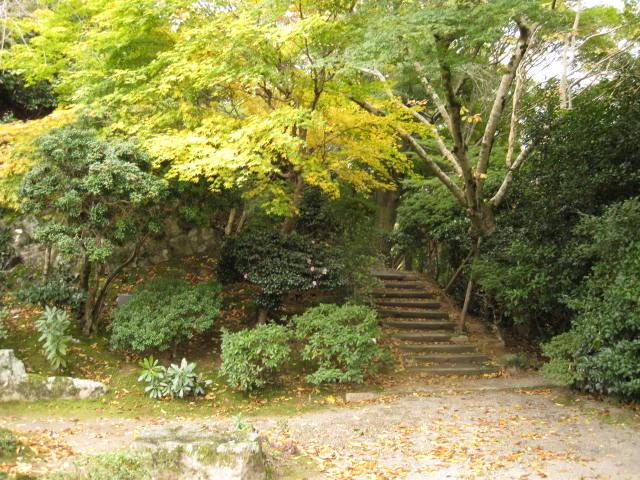 10-koyo-yoshino52.JPG