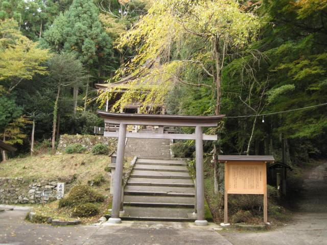 10-koyo-yoshino59.JPG