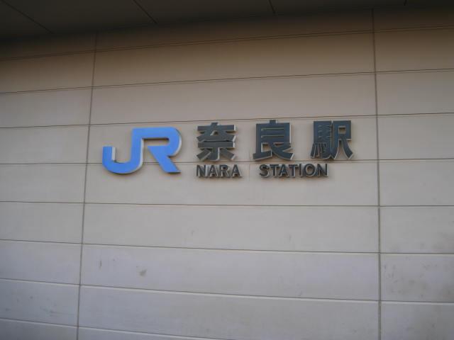 10-winter-nara8.JPG