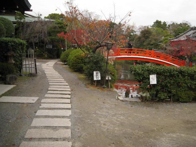 11-koyo-kyoto119.JPG