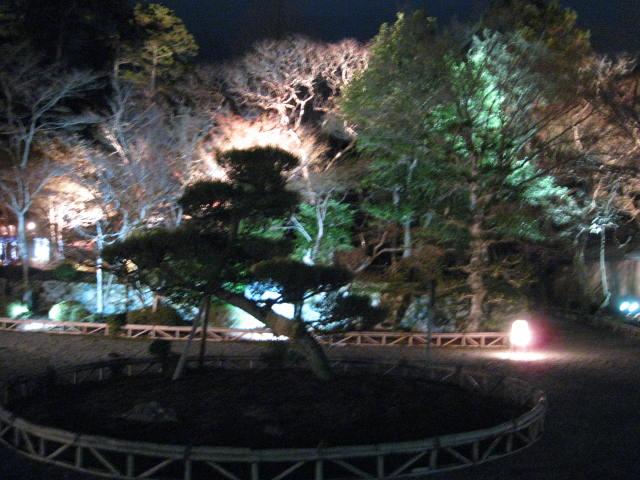 11-koyo-kyoto234.JPG