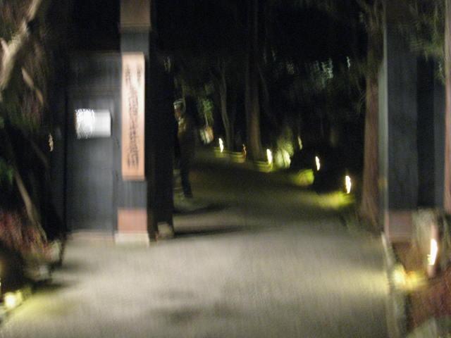 11-koyo-kyoto243.JPG