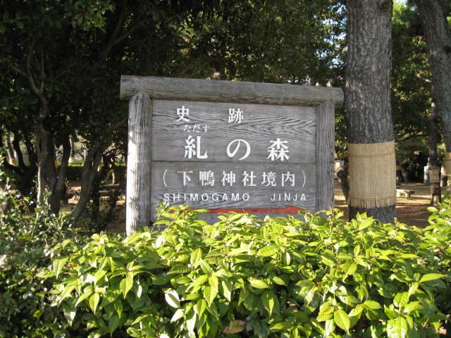 11-koyo-kyoto267.JPG