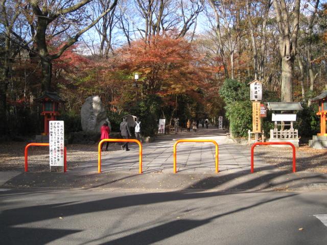 11-koyo-kyoto268.JPG