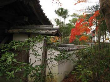11-koyo-kyoto94.JPG