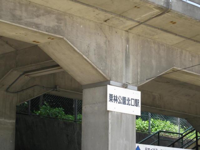 11-sum-rep-sanuki15.JPG