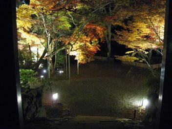12-koyo-kyoto132.JPG