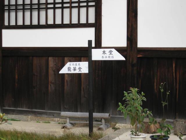 12-koyo-kyoto183.JPG