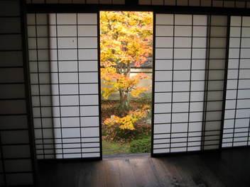 12-koyo-kyoto188.JPG