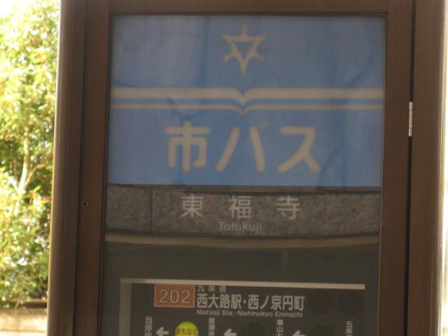 12-koyo-kyoto191.JPG