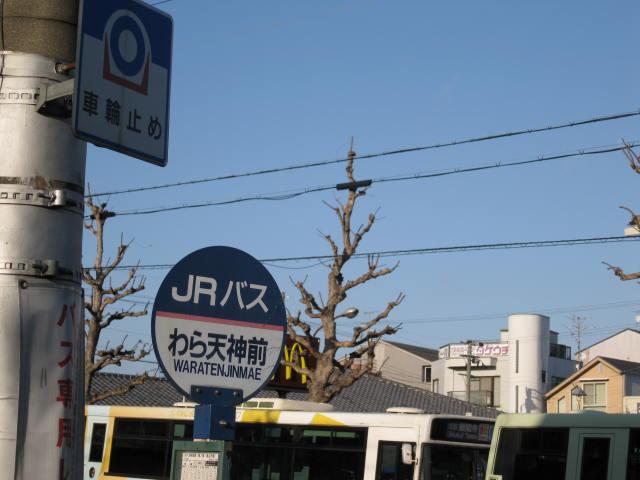 12-sakura-kyoto117.JPG
