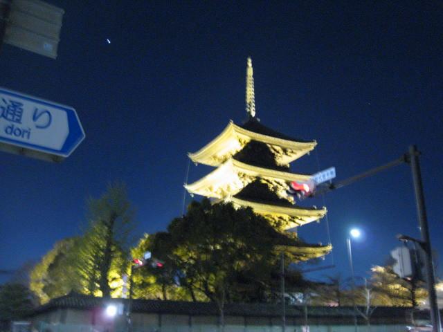 12-sakura-kyoto145.JPG