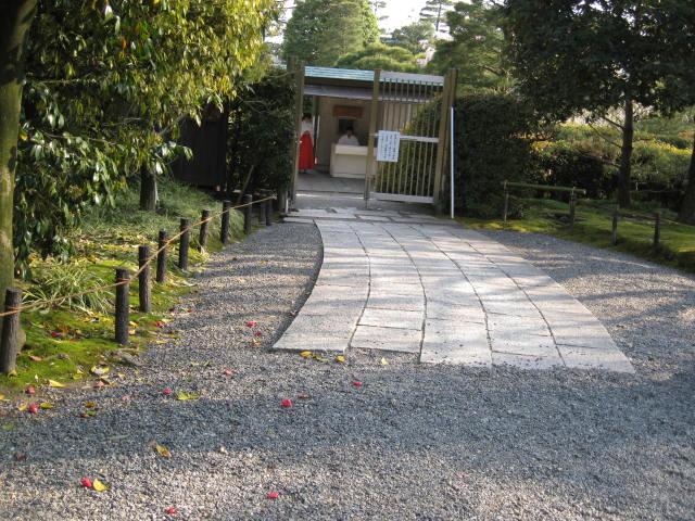 12-sakura-kyoto241.JPG