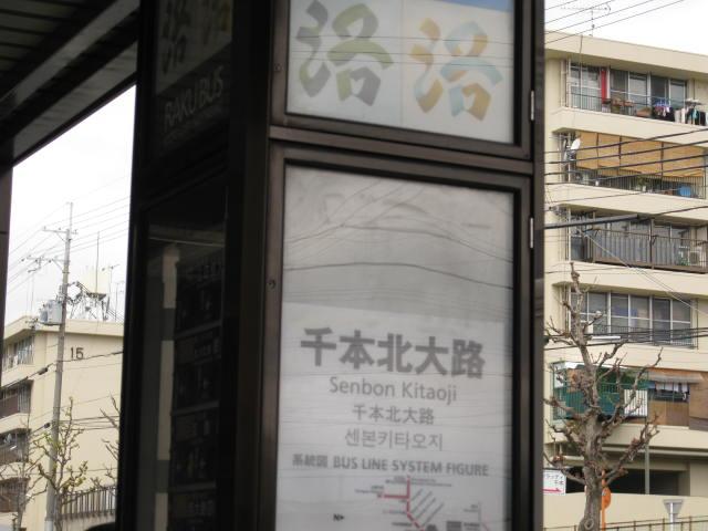 12-sakura-kyoto280.JPG
