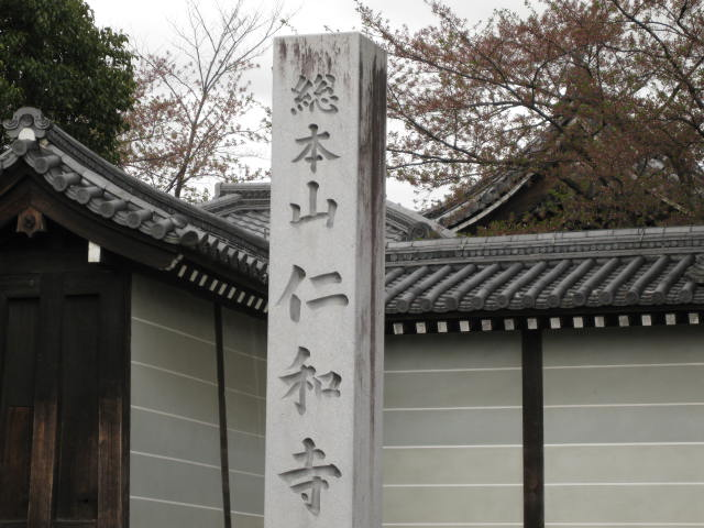 12-sakura-kyoto365.JPG