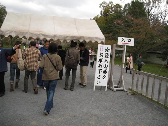 12-sakura-kyoto370.JPG
