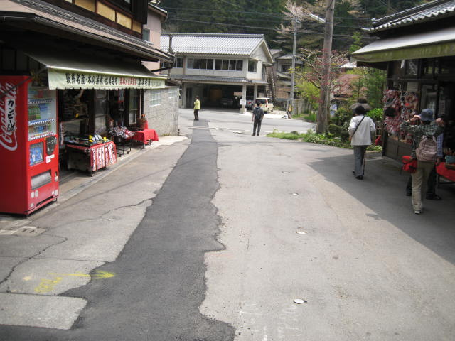 12-sakura-kyoto402.JPG