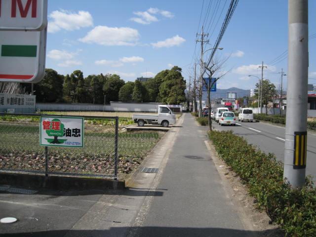 12-ume-kyoto7.JPG