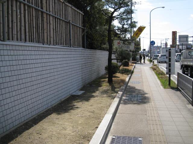 12-ume-kyoto8.JPG