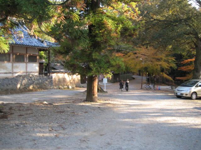 13-koyo-nara38.JPG