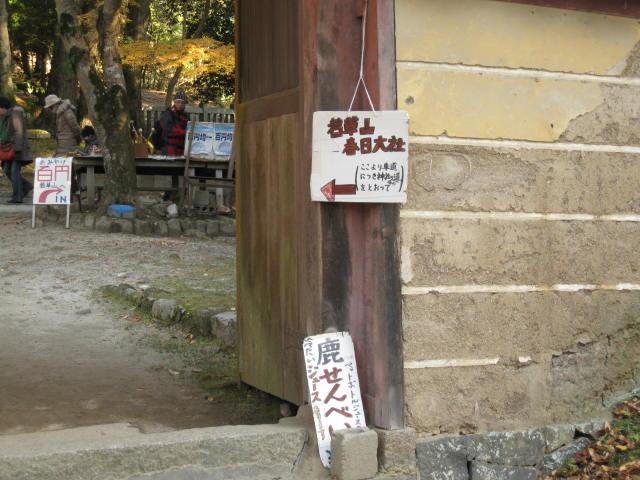 13-koyo-nara39.JPG