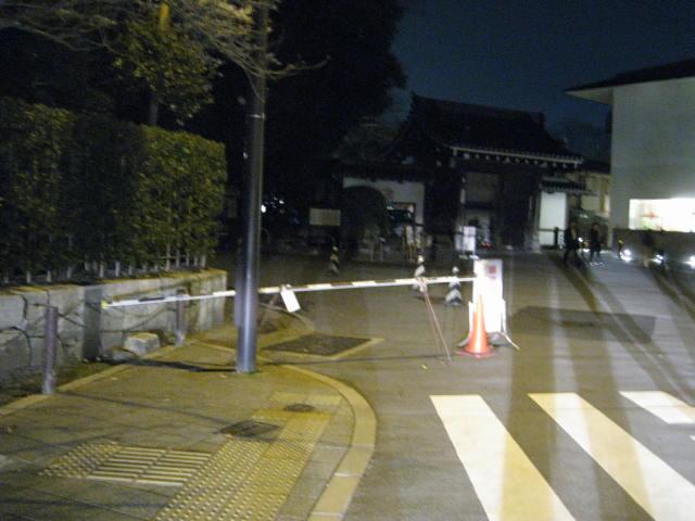 13-sakura-kyoto137.JPG