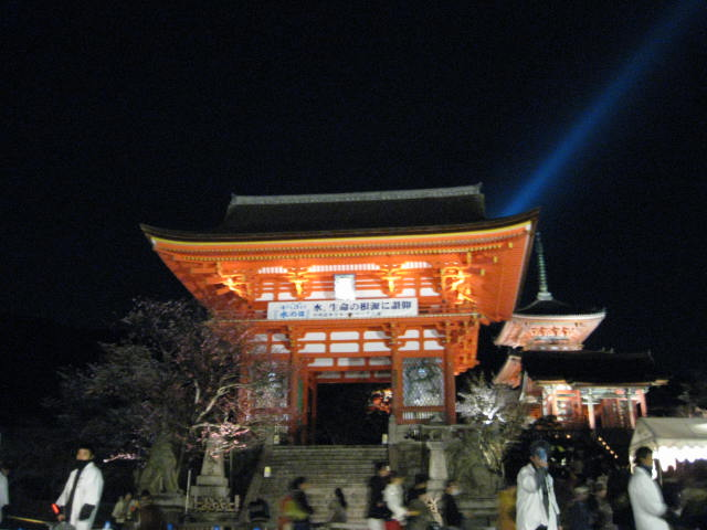 13-sakura-kyoto149.JPG