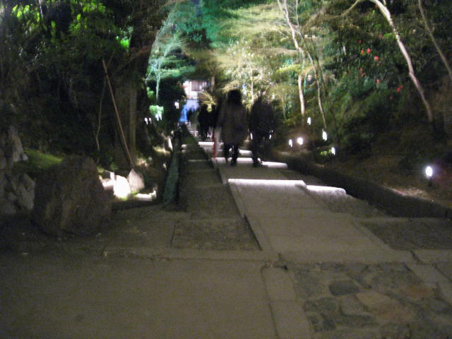 13-sakura-kyoto169.JPG