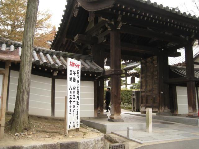 13-sakura-kyoto177.JPG