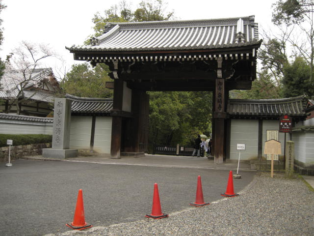 13-sakura-kyoto208.JPG