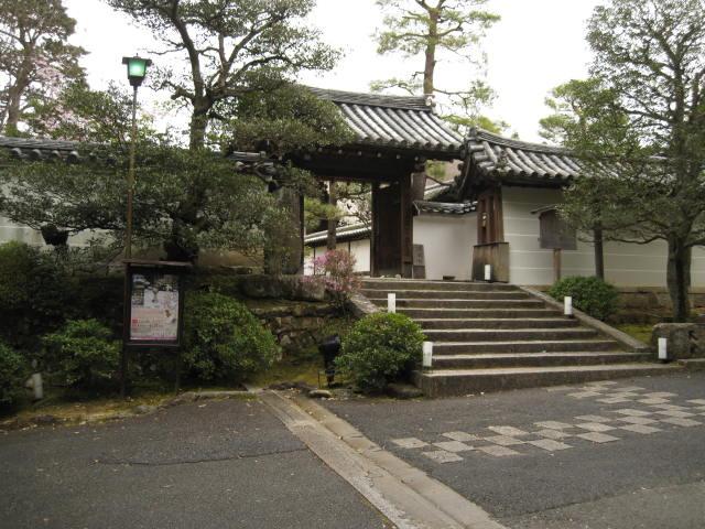 13-sakura-kyoto218.JPG
