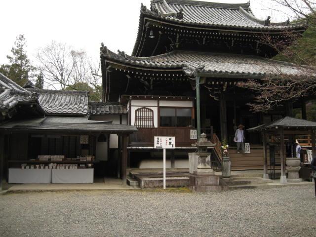 13-sakura-kyoto231.JPG