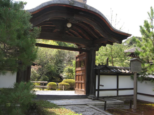 13-sakura-kyoto24.JPG