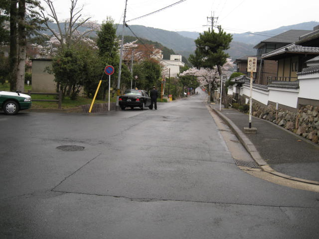 13-sakura-kyoto248.JPG