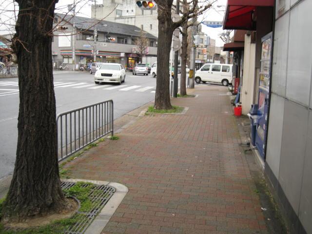 13-sakura-kyoto266.JPG