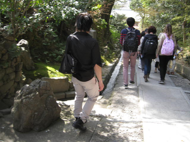 13-sakura-kyoto81.JPG
