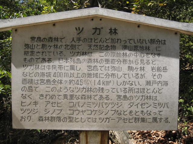13-sp-hiroshima70.JPG
