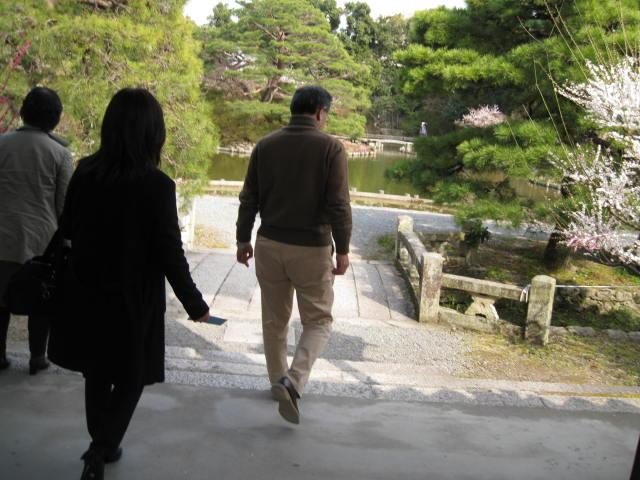 13-ume-kyoto16.JPG