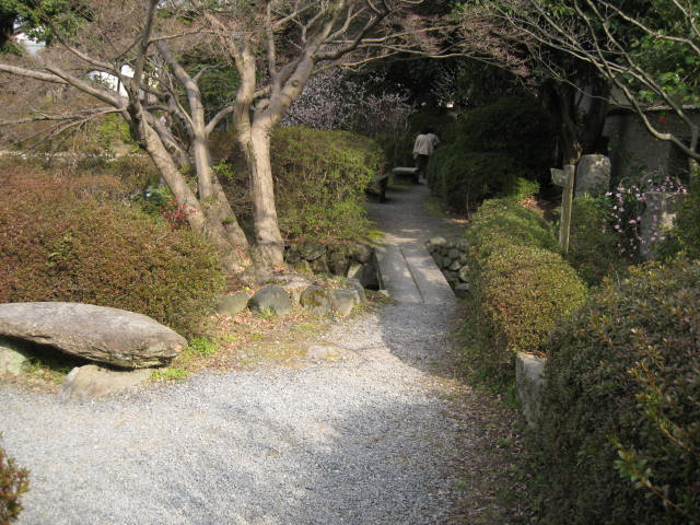 13-ume-kyoto18.JPG