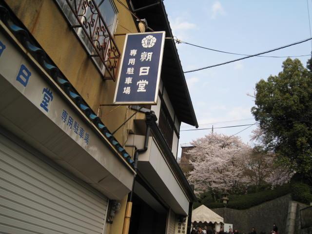 14-sakura-kyoto2.JPG